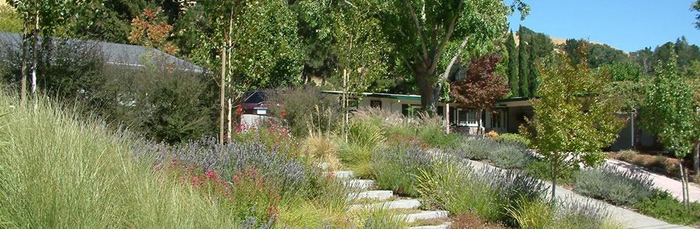 Beautiful ventura county lawn to garden Ventura home and garden show